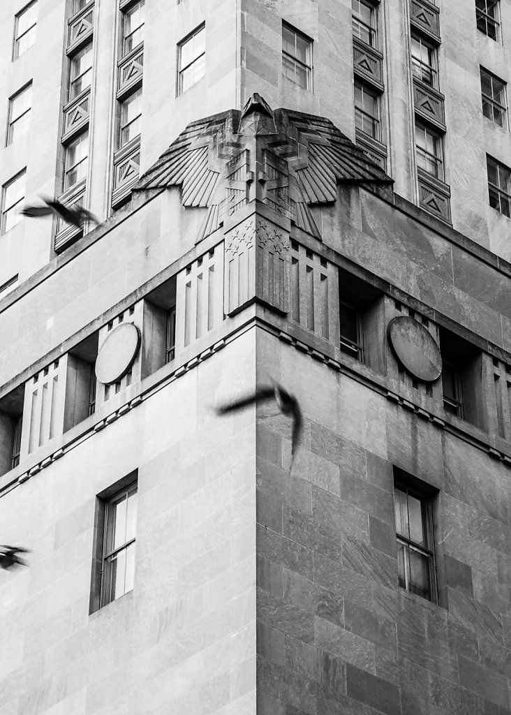 In Flight - New York